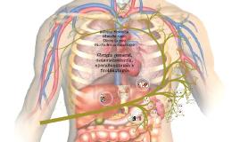 Cirugía general, colecistectomía, apendicectomía y tiroidect