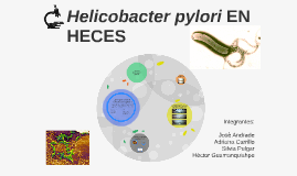Copy of HELICOBACTER