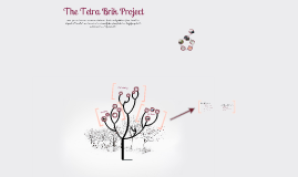 GIN Conference: The Tetra Brik Project