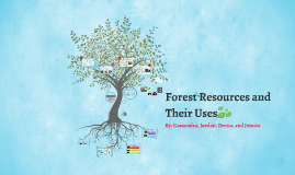 Forest Resources and Their Uses