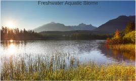 Freshwater Aquatic Biome