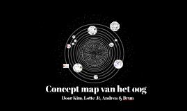 Concept map van het oog