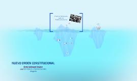 NUEVO ORDEN CONSTITUCIONAL