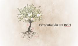 Copy of Presentación del Brief