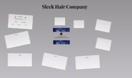 Sleek Hair Company