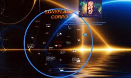 SONYFLASH-CORPO