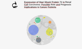 Expresion of Heat Shock Protein 72 in Renal Cell Carcinoma: