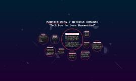 Copy of CONSTITUCION Y DERECHO HUMANOS