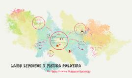 Copy of labio leporino y fisura palatina