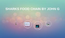SHARKS FOOD CHAIN BY JOHN G