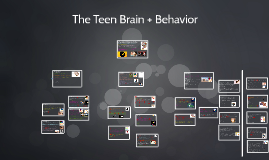 The Teen Brain + Behavior