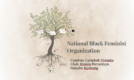 Copy of National Black Feminist Organization