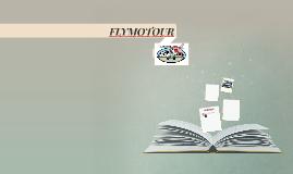 FLYMOTOUR