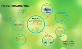 Ambiente: conceptos y representaciones
