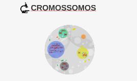 Copy of Tipos de cromossomos
