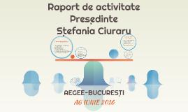 Raport de activitatepreședinte Ștefania ciuraru