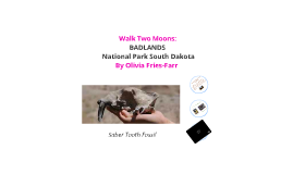 Copy of Walk Two Moons Presentation: Badlands