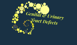Genital and Urinary Tract Defects