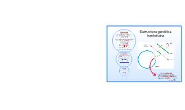 Estructura genética bacteriana