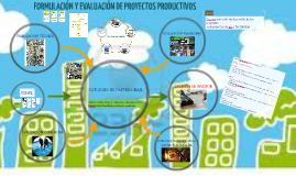 """Proyecto Productivo """"Formulación y Evaluación de Proyectos Productivos"""""""