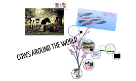 MERL - COWS AROUND THE WORLD