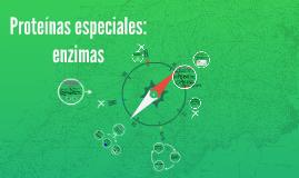Proteinas especiales: enzimas