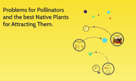 Problems for Pollinators and the best Native Plants for Attr