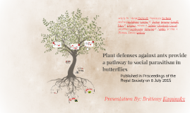 Plant defenses against ants provide a pathway to social parasitism