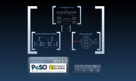 Las organizaciones humanas PeSO