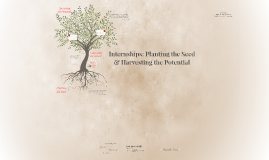 Internships: Planting the Seed & Harvesting the Potential
