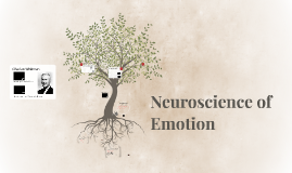 Neuroscience of Emotion