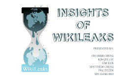 INSIGHTS ABOUT WIKILEAKS