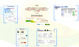 VideoConferência Agrobiologia
