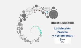 Copy of Selección: Proceso y Herramientas