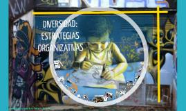 DIVERSIDAD: ESTRATEGIAS ORGANIZATIVAS