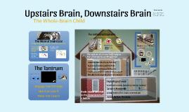 Upstairs Brain, Downstairs Brain