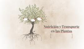 Nutrición y Transporte en las Plantas