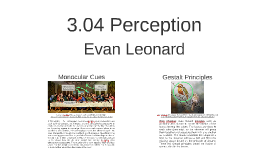 3.04 Perception