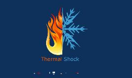 Thermal Shock