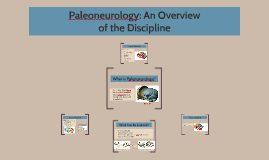 Paleoneurology