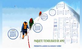 PAQUETE TECNOLOGICO DE APIO