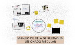 MANEJO DE SILLA DE RUEDAS EN LESIONADO MEDULAR
