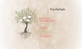 Psychologie 2a