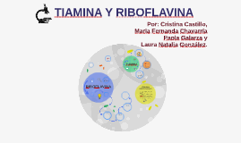 Copy of TIAMINA Y RIBOFLAVINA