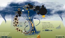 Copy of TORNADO