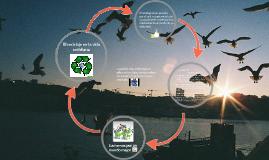 El reciclaje en la vida cotidiana