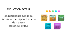 INDUCCIÓN EC0217