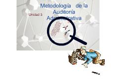 Copy of Metodología de la Auditoria Administrativa