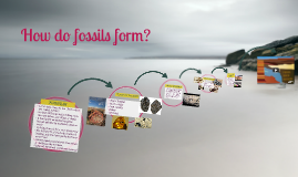 Copy of How do fossils form?