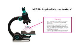 MIT Bio Inspired Microactuators!